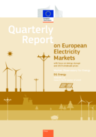 Quarterly Report on European Electricity Markets with Focus on Energy Storage and 2019 Wholesale Prices (2020)